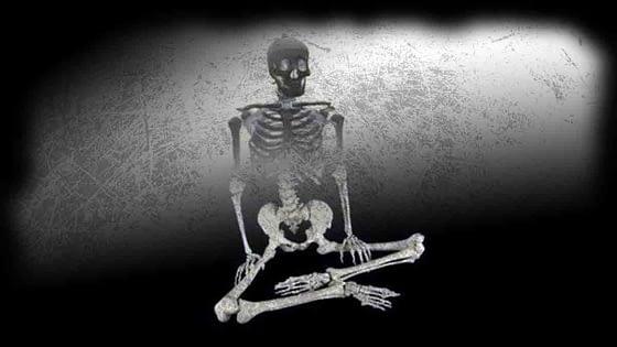 Skeleton Props for Halloween: 10 Comparisons
